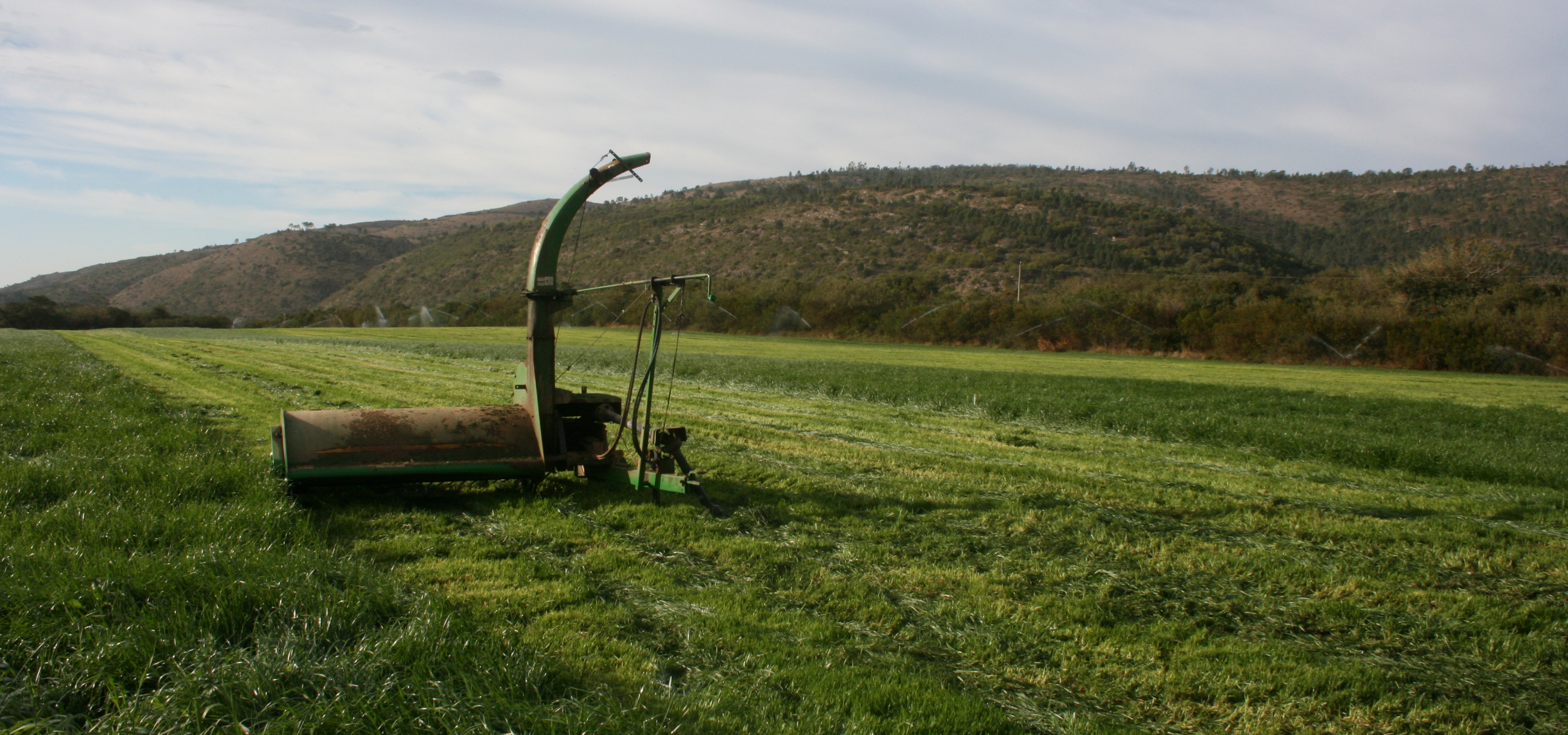 open grass field with equipment on
